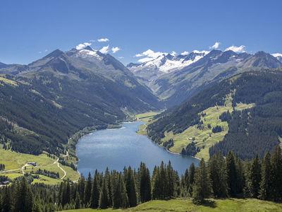Wald Im Pinzgau