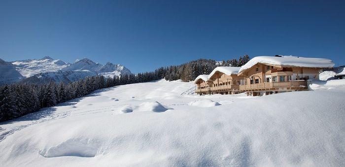 Gans den Berg 1 Salzburgerland