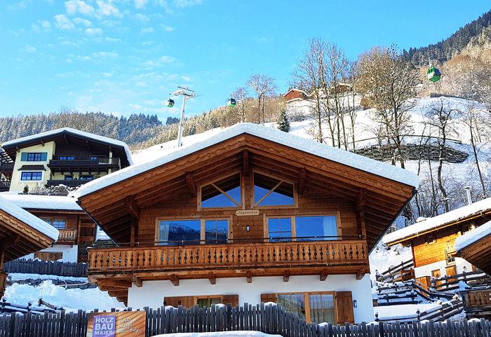 Grünerstein Haus Alpenrose Salzburgerland